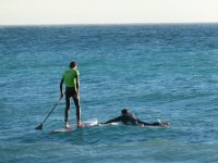 surf y paddlesurf