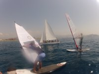 课程莫特里尔莫特里尔风帆