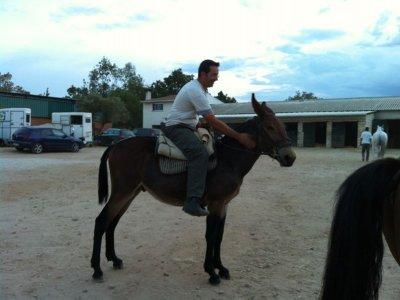 在El Escorial骑马奖金4小时