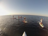Monthly Ticket Stand Up Paddle Surf in Barceloneta