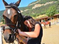 Colocando las riendas al caballo