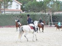 Con caballos y ponis en la pista