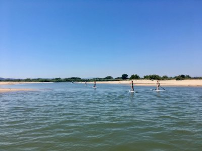 Stand Up Paddle Surf Rental in L