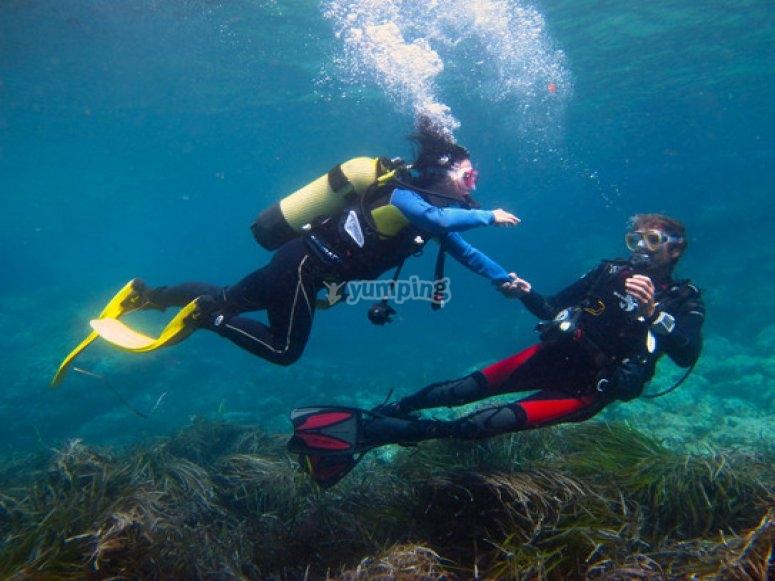 潜水课程开放水域