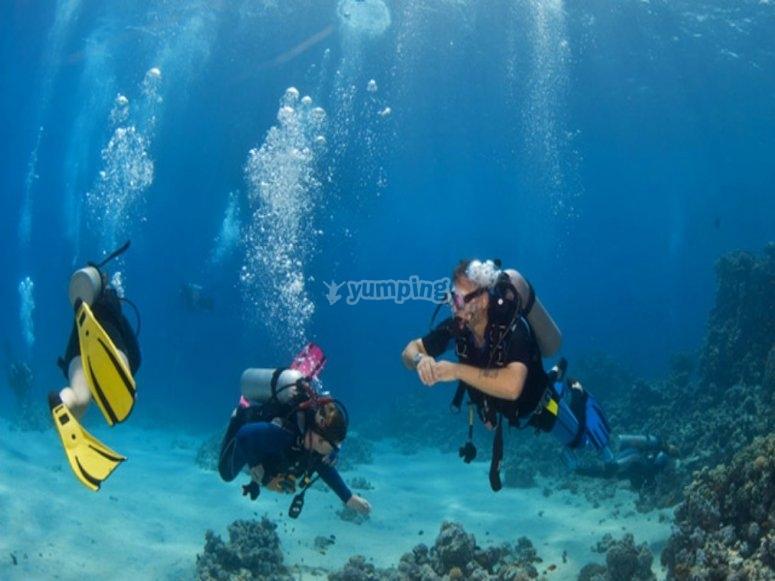 Diving adventure in Ibiza