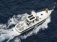 Avistamiento de cetáceos, El Arenal, una jornada