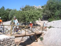 Salida en biçi por los caminos viejos en Mallorca