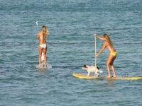 El paddle surf se ha convertido en un deporte muy popular.