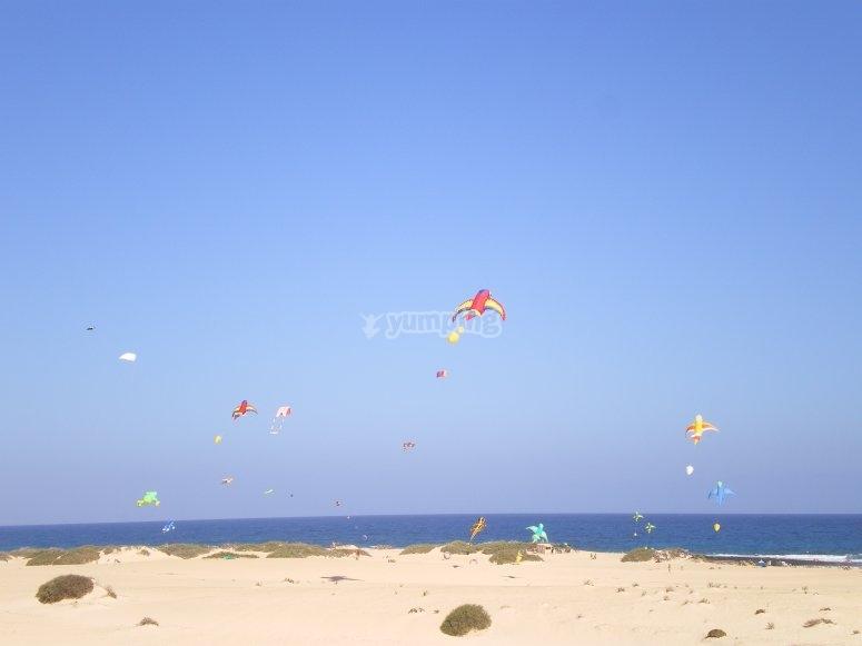 playa de los Lagos