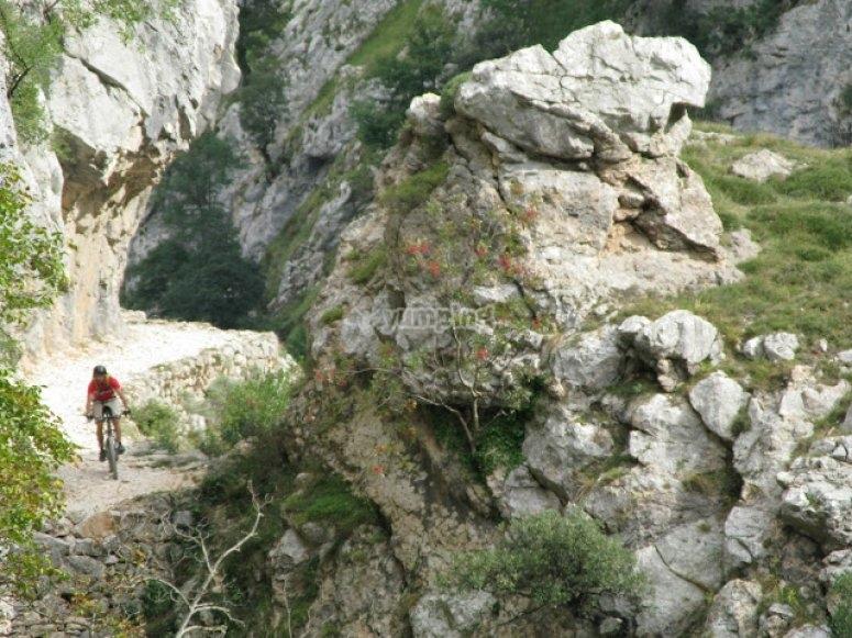 bicleta asturias