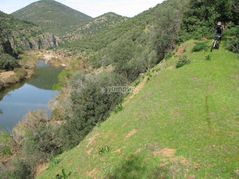 rio sierra morena