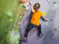 Young climber at the rocodromo