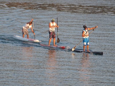 Try our SUP board, 1 hour