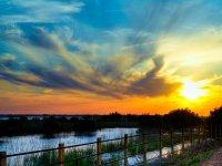 Tramonti nel Parco naturale di Doñana