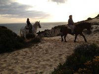 Tours on horseback in Huelva
