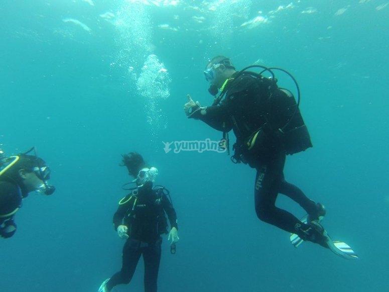 buceando bajo el mar