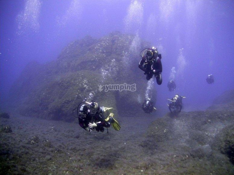 Experiencia de buceo en Isla Grosa