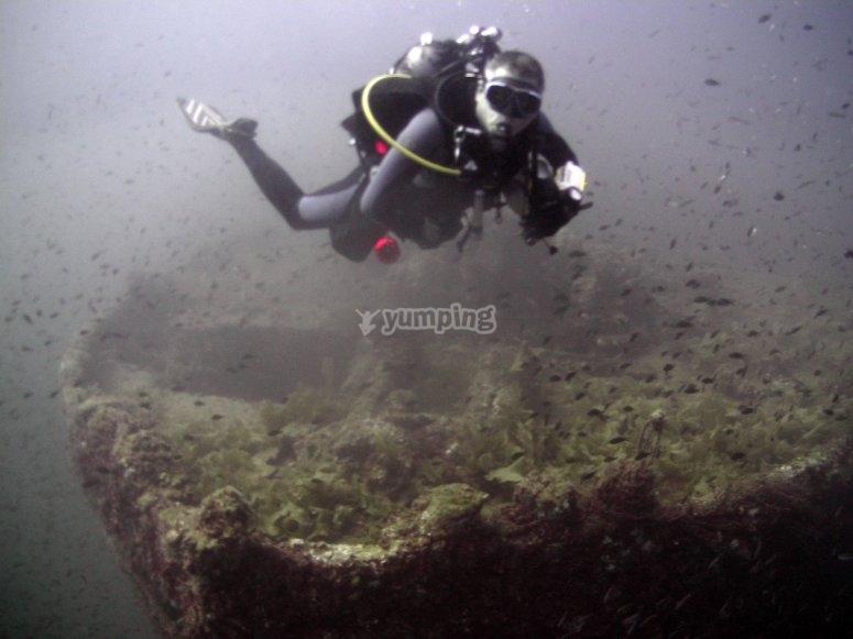Bucear por barco hundido Isla Grosa