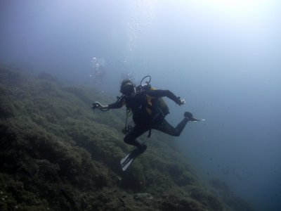 Scuba diving with thank, Isla Grosa