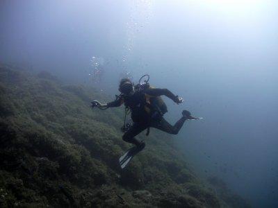 Inmersión de buceo con botella en Isla Grosa