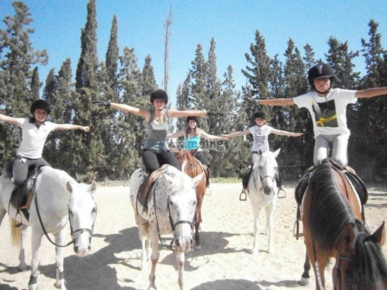 Activities with horses