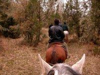 Ruta a caballo en Grajera, 2 horas
