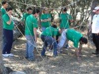 En una actividad de Teambuilding