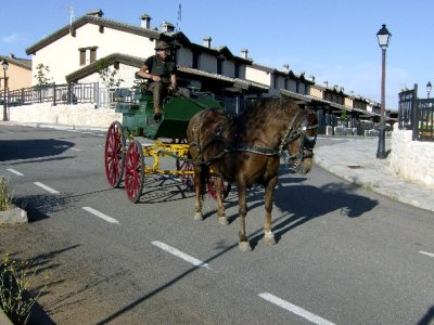 horse-drawn carriage, laser tag + meal