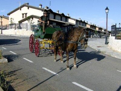 Paseo en carruaje de caballos, laser tag y comida