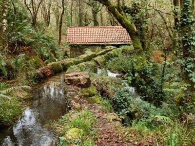 Xplora Galicia Visitas Guiadas