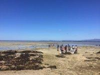 Visiting the shellfish areas