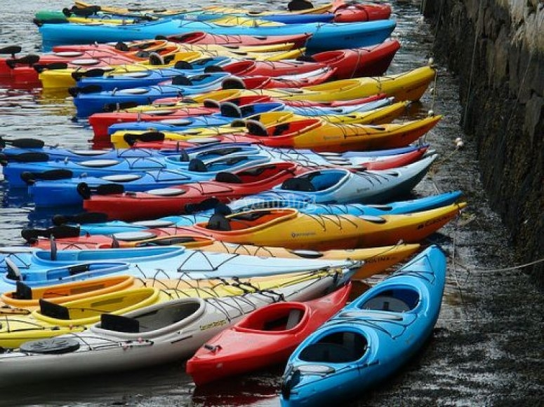 Different kayaks on shore