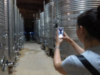 Taking photos of the winery