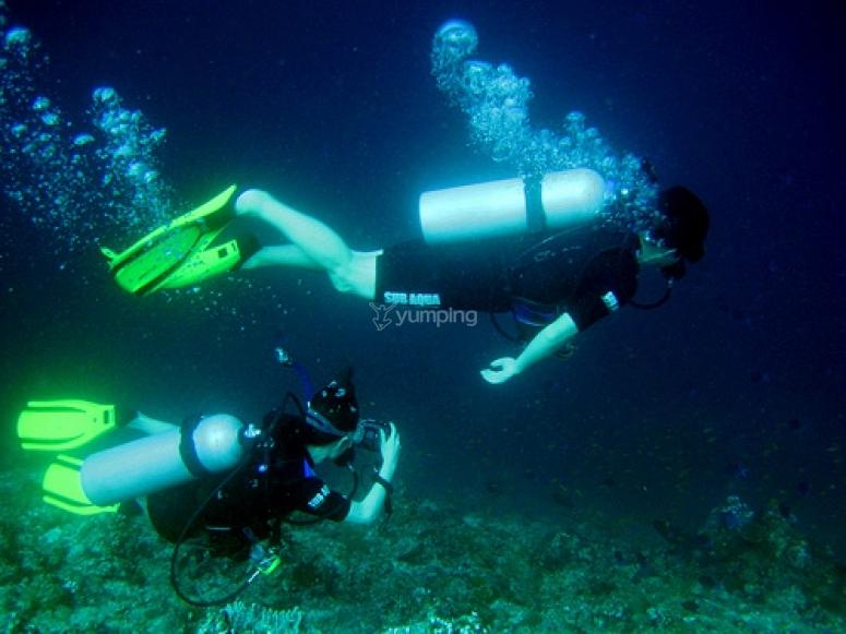 专家潜水员