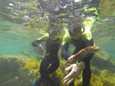 Alquiler equipo de snorkel en Playa de Ris 2 horas