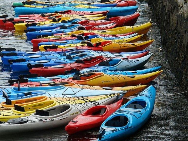 varios kayaks de colores en un lago