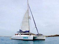 snorkle双体船