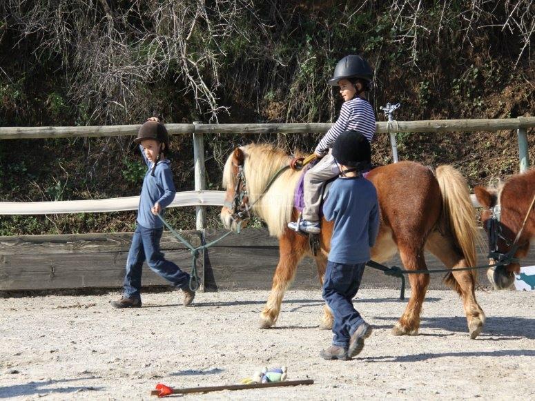 Gruppo di scolari in pony