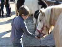 Oferta Paseo en pony para ni�os 30 min Collserola