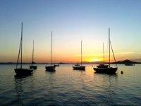 Sailboats on the sleeve