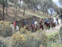 自然公园的Sierra de卡德纳Ÿ蒙托罗