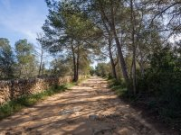 Roads of Mallorca