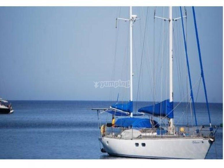 Sailing boat rental
