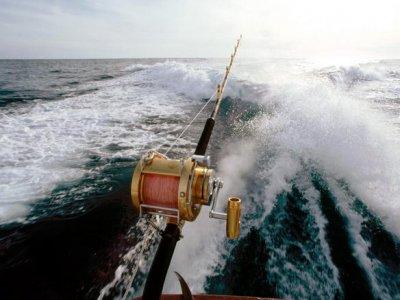 Pesca de Curricán en la bahía de Almería, 4 horas