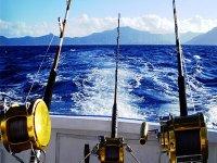 Pesca en la bahía de Almería 4 horas