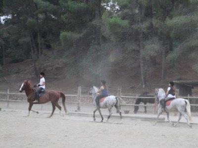 Horse ride 5 lessons bonus Garraf Natural Park
