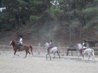 Aprendiendo a montar con los caballos