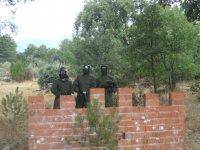 Defensores del muro de ladrillos