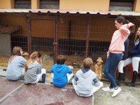 Actividades con animales y peques