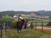 Bajando el camino con los caballos
